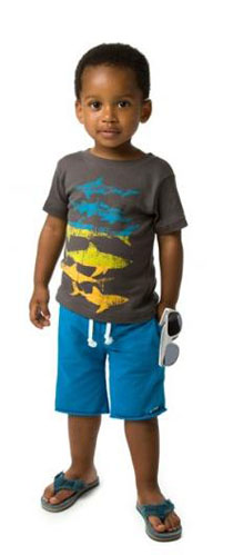Appaman - Camp Shorts in Reef